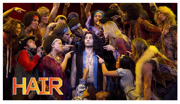 Cast of HAIR musical 2011